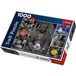 PUZZLE Budda 1000