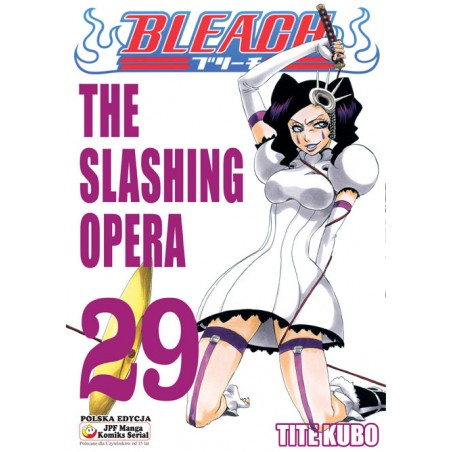 BLEACH tom 29