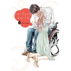 PERFECT WORLD tom 8