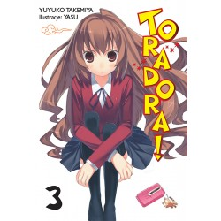 TORADORA LIGHT NOVEL tom 3