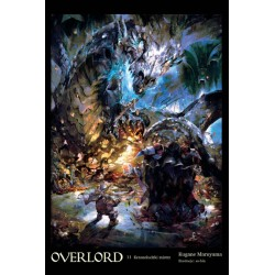 OVERLORD Light novel tom 11