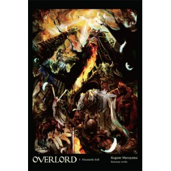 OVERLORD Light novel tom 1