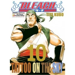 BLEACH tom 10