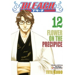 BLEACH tom 12