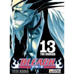 BLEACH tom 13