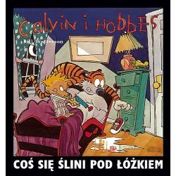 CALVIN I HOBBES tom 2