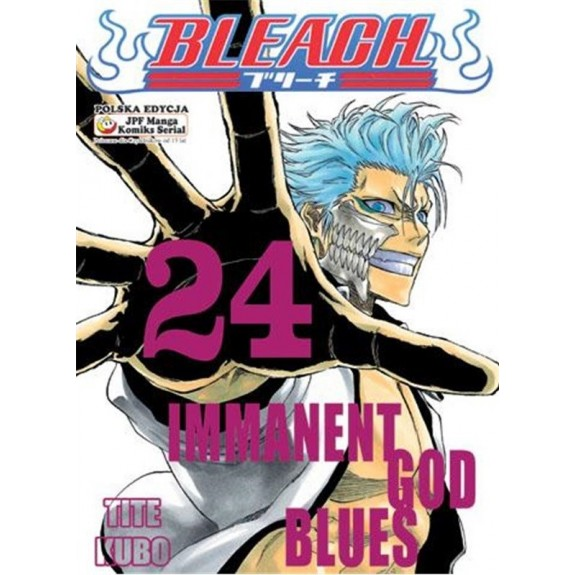 BLEACH tom 24